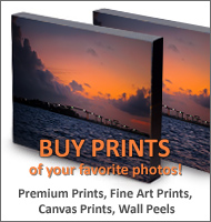 Buy prints of your favorite photos of Suriname on suriname360!