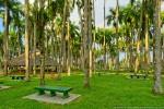 View 2 from Palmentuin (Palmtree Garden)