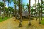 View 3 from Palmentuin (Palmtree Garden)